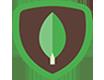 mongodeb icon